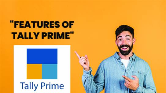 Features of Tally Prime