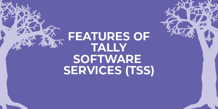 tally software services