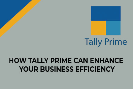 tally prime software benefits