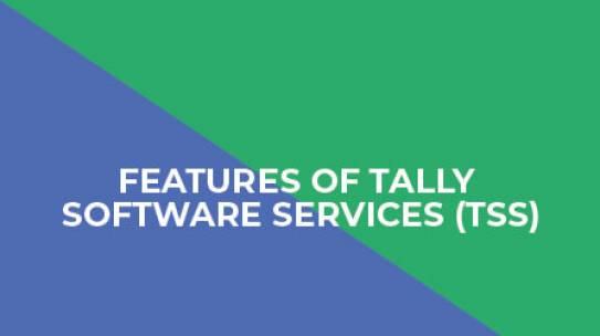 Features Of Tally Software Services