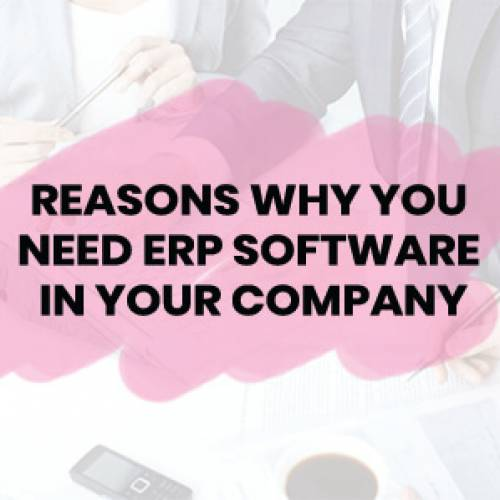 Reasons Why You Need ERP Software In Your Company