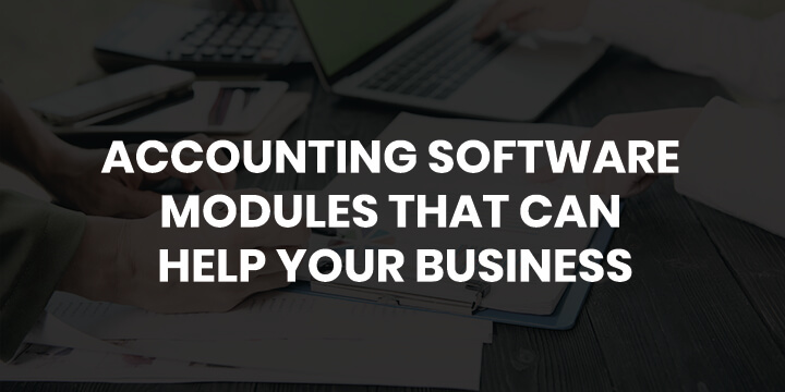 tally accounting software modules