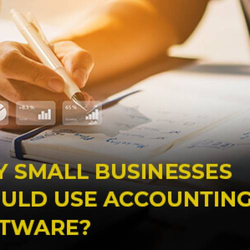 Why Small Businesses Should Use Accounting Software?