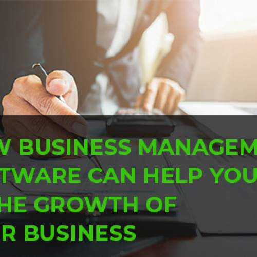 How Business Management Software Can Help You in The Growth of Your Business?